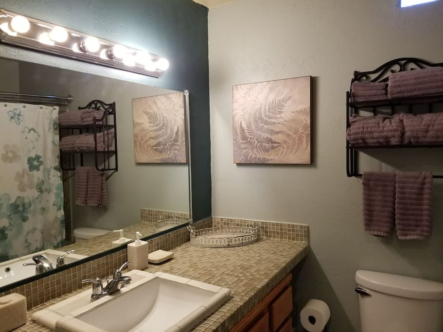 Bathroom with a full supply of towels, air freshener, shampoo, conditioner, and body wash