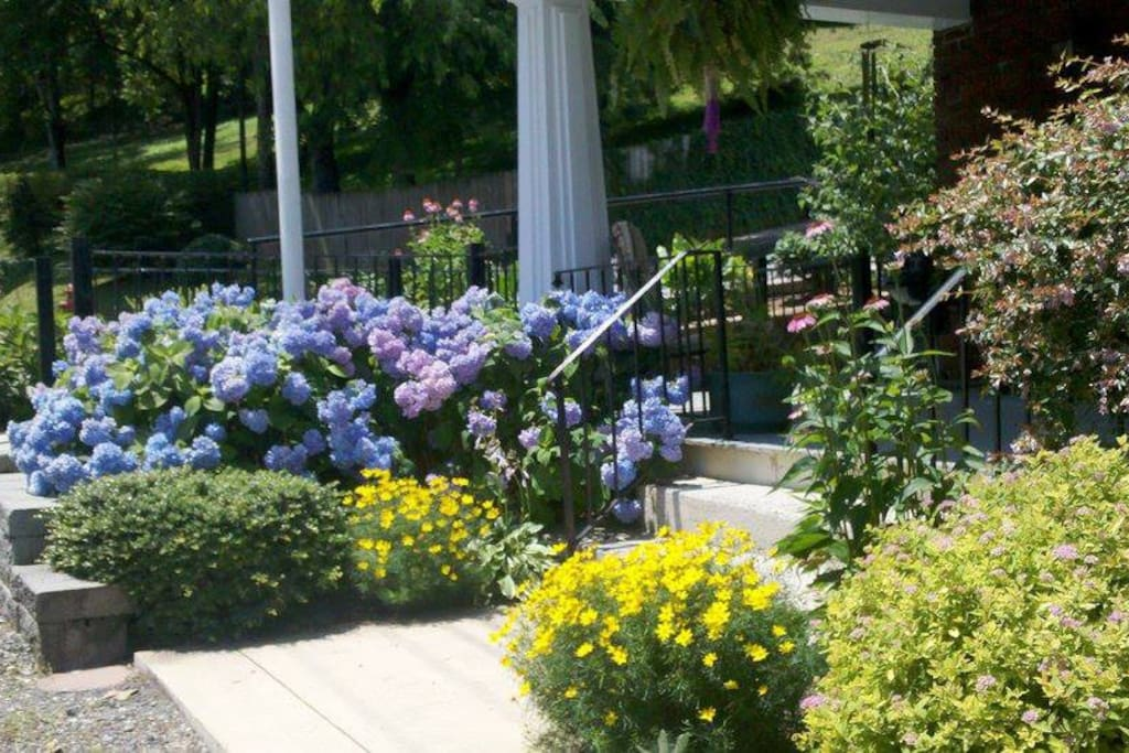 Schulman House in its summer glory.