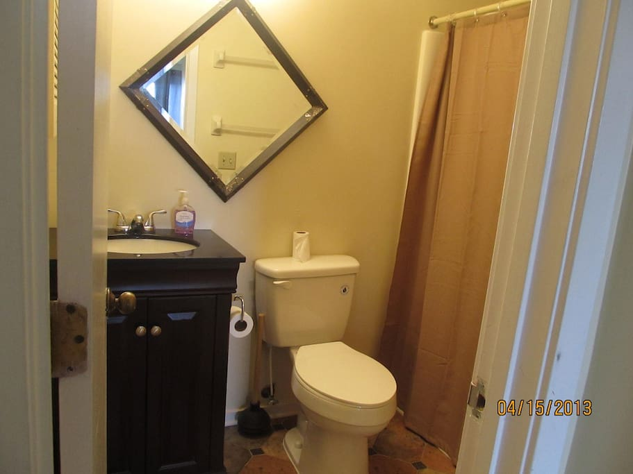 master bathroom with updates including low flow toilets, new shower curtain and cabinets.