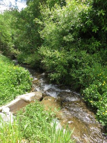 our stream