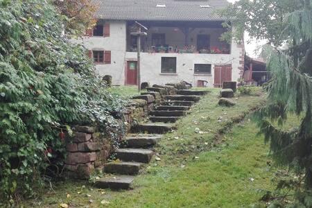 Gîte Sapin - Saint-Dié-des-Vosges - Гостевой дом
