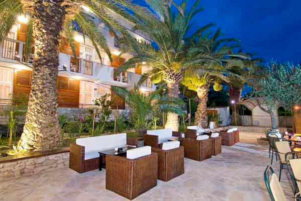 Our beautiful Terrace under the shadow of Palms and Olive Trees