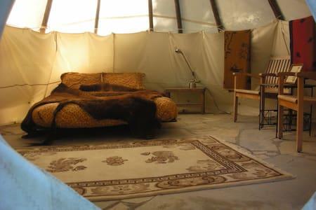 Sitting Bull Tipi at Tipi Village  - Marcola - Khemah Tipi