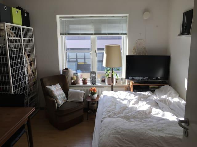 Lille hyggelig lejlighed i centrum af Esbjerg :) - Esbjerg - Byt