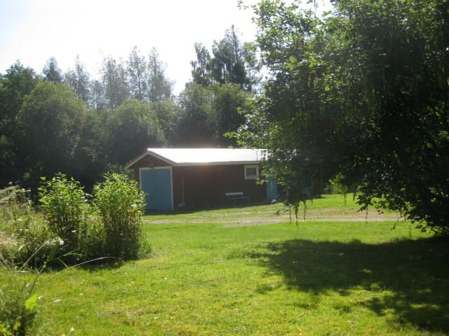 Garden with shed.