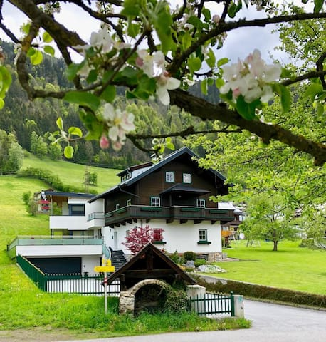 Ferienhaus auf der Salzburger Sonnenterrasse