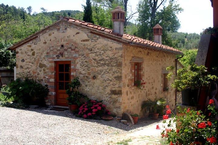 Chianti Independent farm - San Casciano in Val di Pesa - Casa