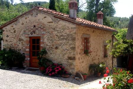 Chianti Independent farm - San Casciano in Val di Pesa - House