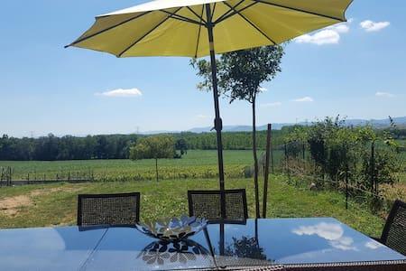 maison cosy, vue sur le vignoble - La chapelle de guinchay