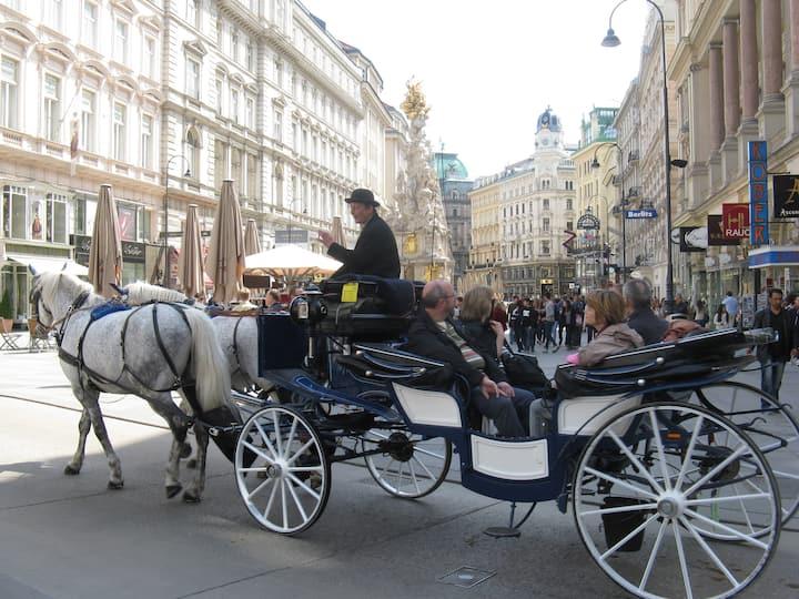 Wien liegt Ihnen zu Füßen