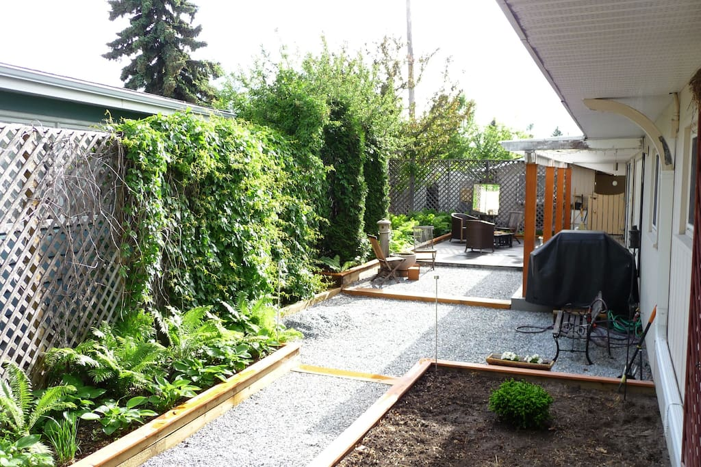 Our tranquil rear courtyard.