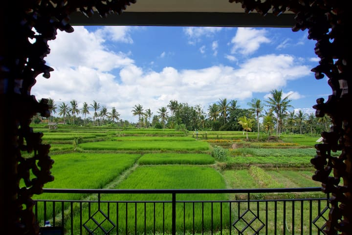 Real balinese homestay experience, beautiful view