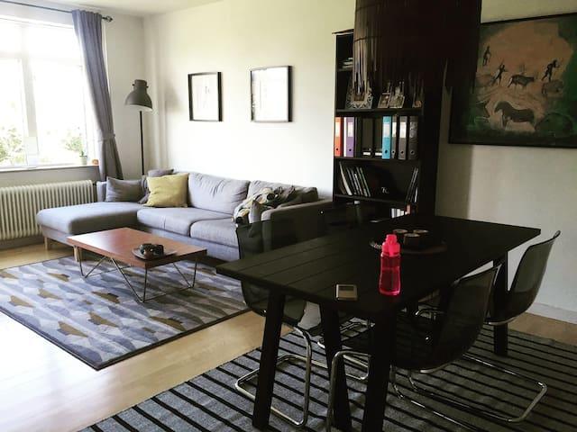 Big, cosy flat, nice neighborhood - Søborg - Apartmen