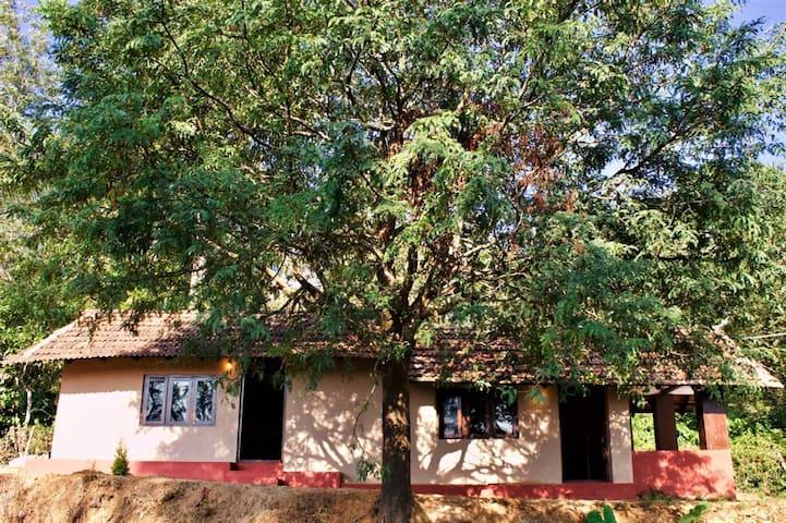 Under the Tamarind Tree (Room #2)