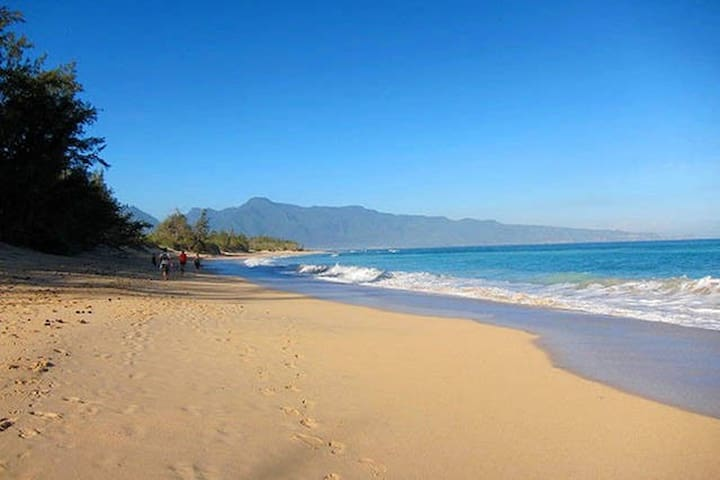 Baby Beach and Baldwin beach are just a two minute walk from the house.