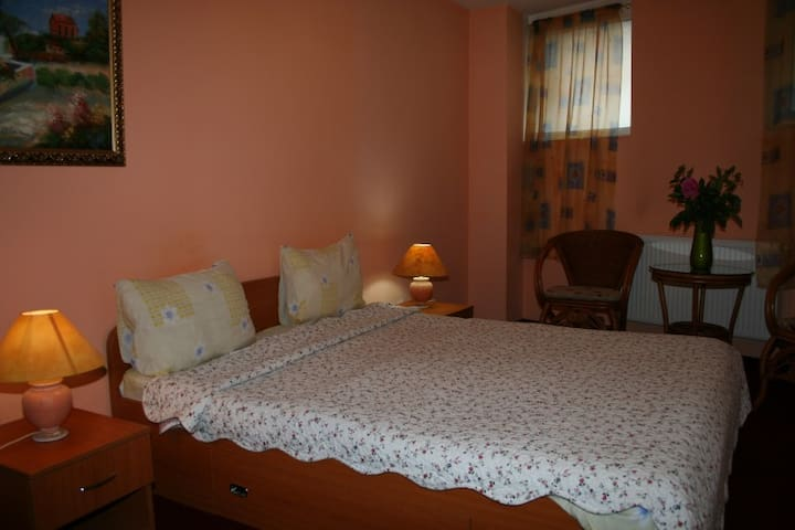 Flower'S B&B! Rooms for rent, right in the center! - București - Huis