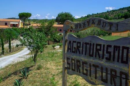 Agriturismo Sorgituro - Postiglione - Penzion (B&B)