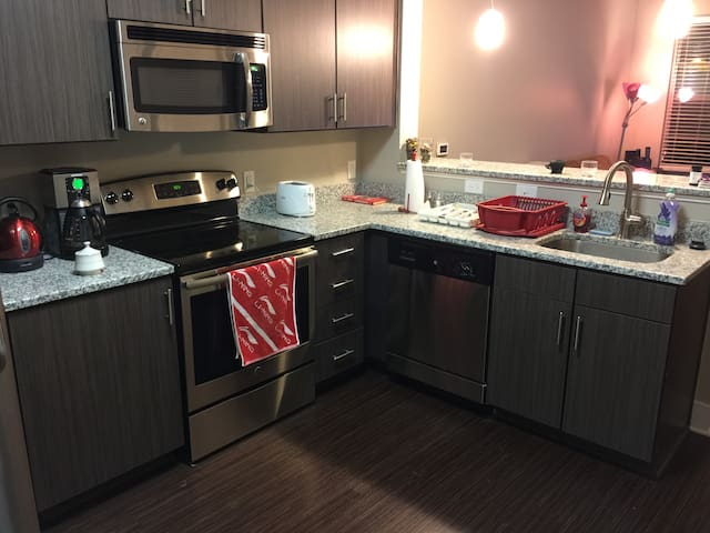 Luxurious & Spacious Downtown Durham Apartment - Durham - Apartment