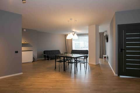 Spacious and sunny Appartment in Birstonas
