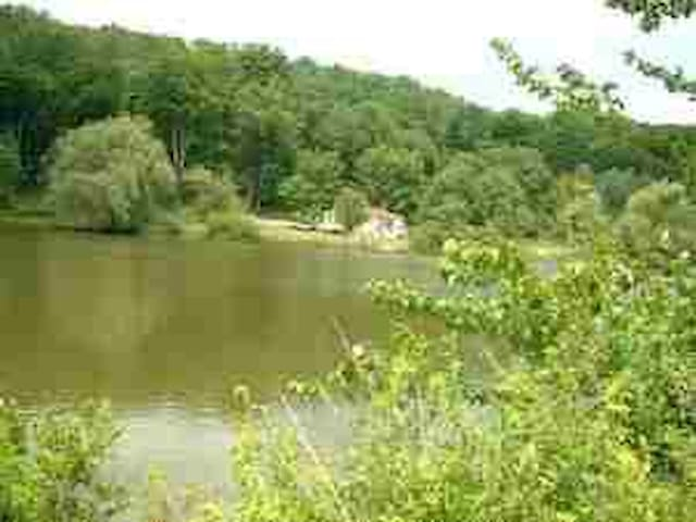 FURNISHED RUSTIC CABIN ON SMALL PRIVATE  LAKE - Woodridge - Bungalow