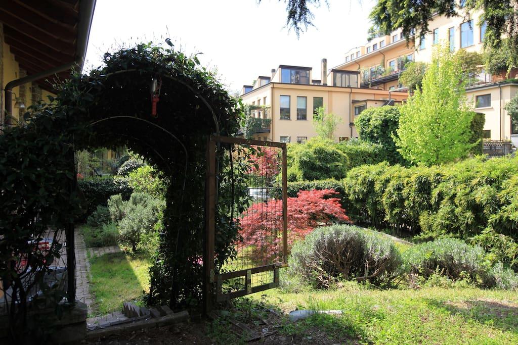 The house' s garden
