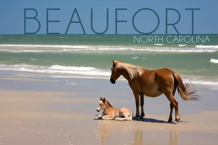Our Happy Place-Beaufort *Bikes*Pet Friendly*