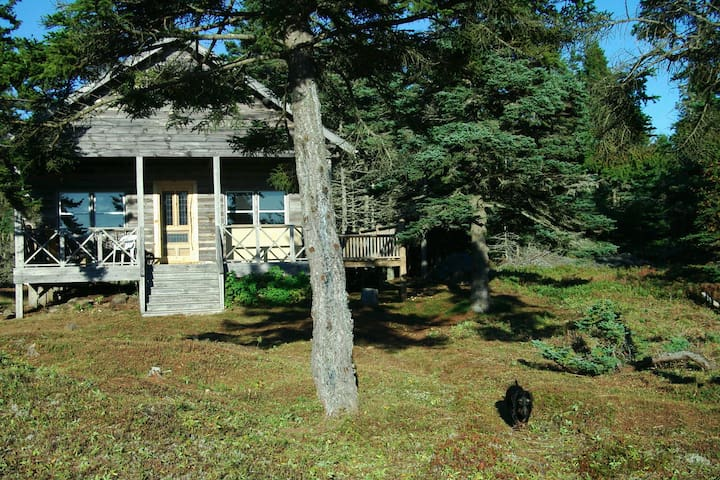 Island Living in Maine Log Cabin - Beals - Casa