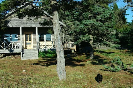 Island Living in Maine Log Cabin - Beals