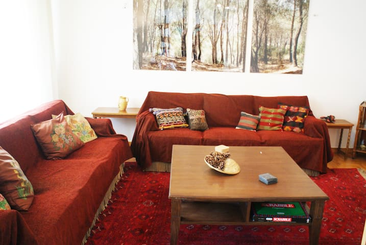 Spacious, classy, cosy apartment in Athens center