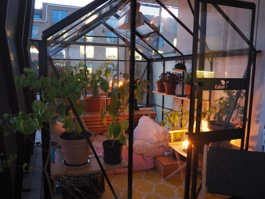 Greenhouse. 2 madreasses can be used as one or two beds.
