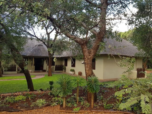 Bushbaby Lodge 213