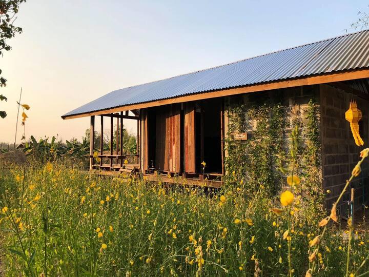 บ้านแม่ MOTHER HOUSE by Mother Organic farming