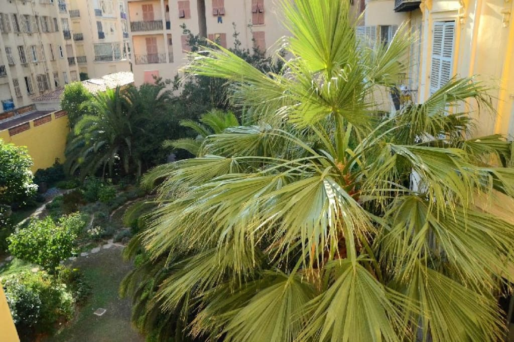 A view to a private garden in the centre of Nice !