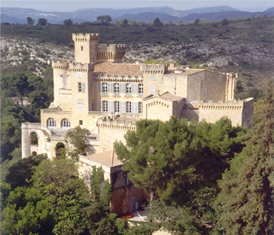 Chateau de La Barben, close to Aix  - La Barben - Bed & Breakfast