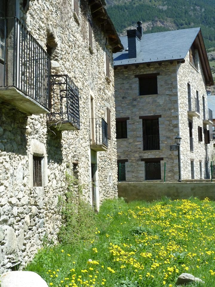 Apartment in the Pyrenees mountains