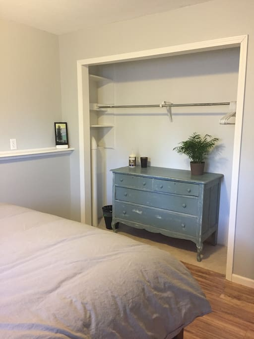 Dresser + closet space for hanging things.