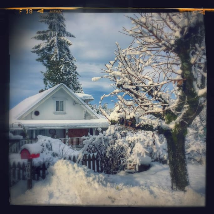 Winter time in Coquitlam doesn't have to be dark and dreary..