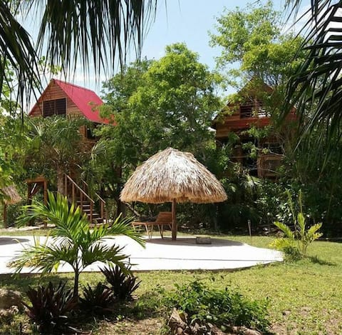 Vegan Community Resort - Serenity Retreats Belize