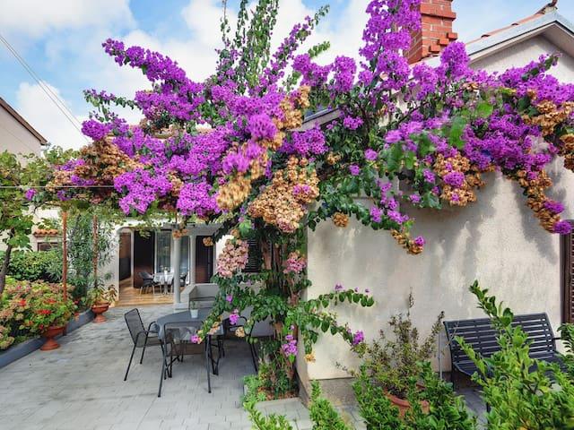 Aurora's garden comfort home for 5