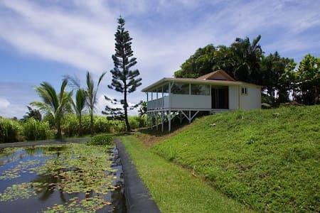 Lily Cottage - Haiku-Pauwela