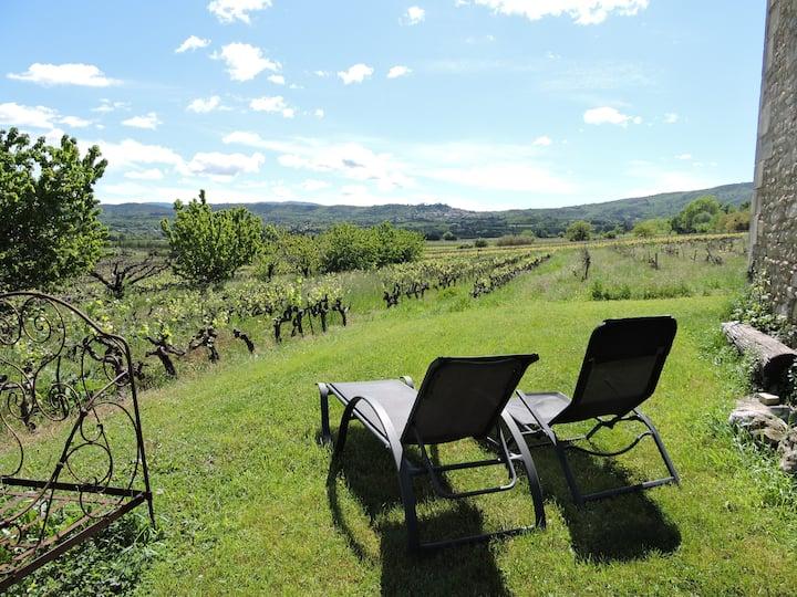 Gîte au milieu des vignes dans le Luberon