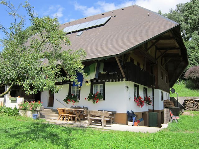 Lovely Black Forest Farmhouse    - Kirchzarten - Hus