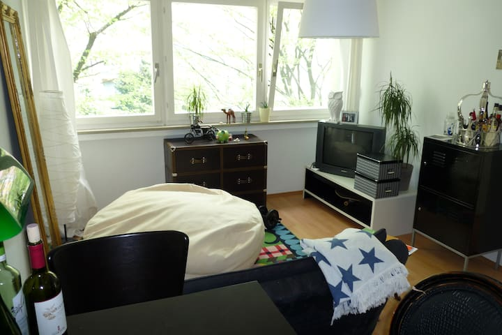 2 room aparment in the middle of M. - Munich - Appartement