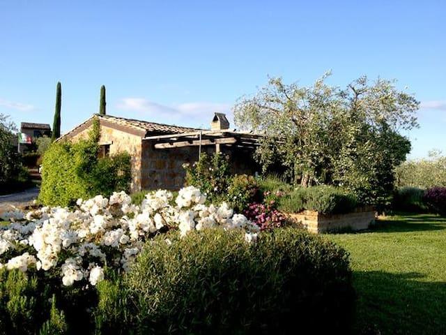 Heaven's Gate - Bagnoregio - House