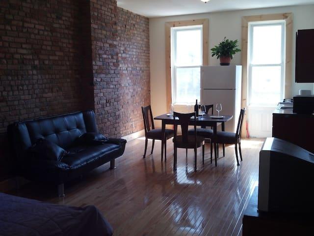 Great Bushwick Studio Apartment
