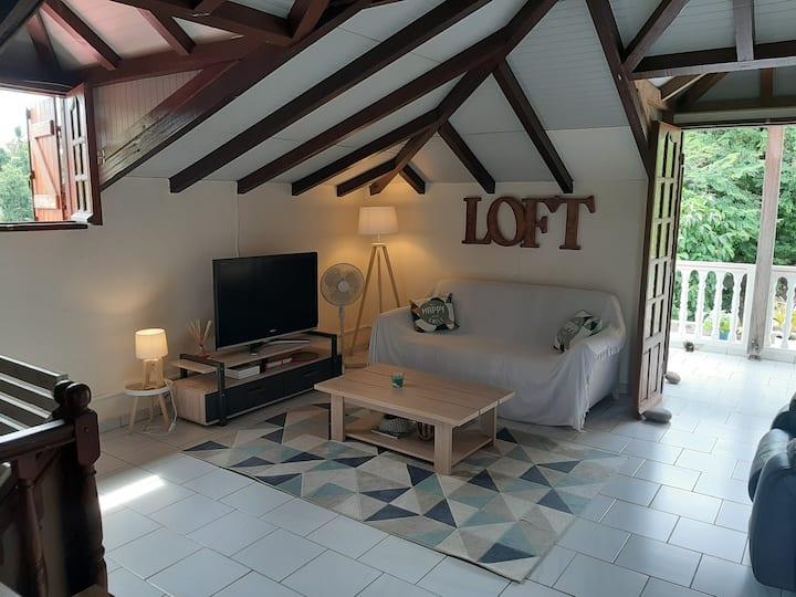 Loft Sérénité Tropical Dream proche centre-plages