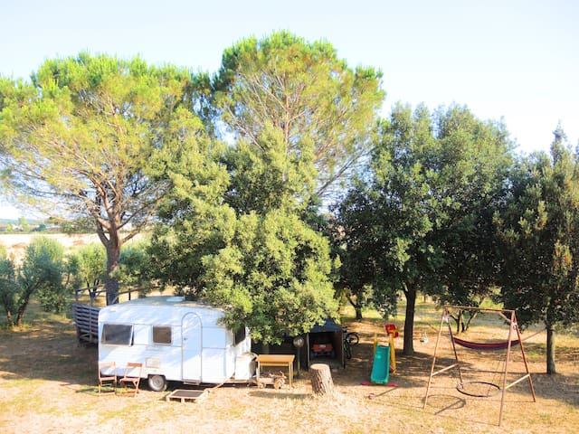Rustic Farm Glamping in Tuscany Maremma