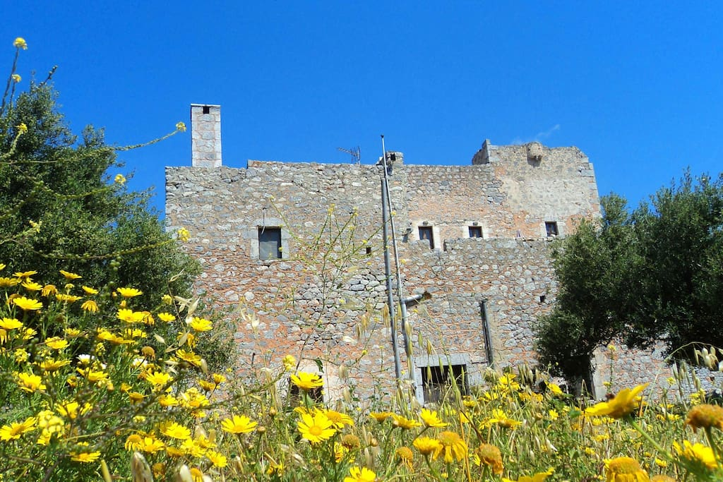 The flowers full of bloom in Spring. Great season to visit the castle, as well
