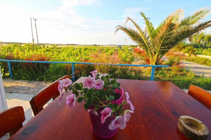 Bozcaada'nın gözde Yerlerinden Çayır plajındadır.