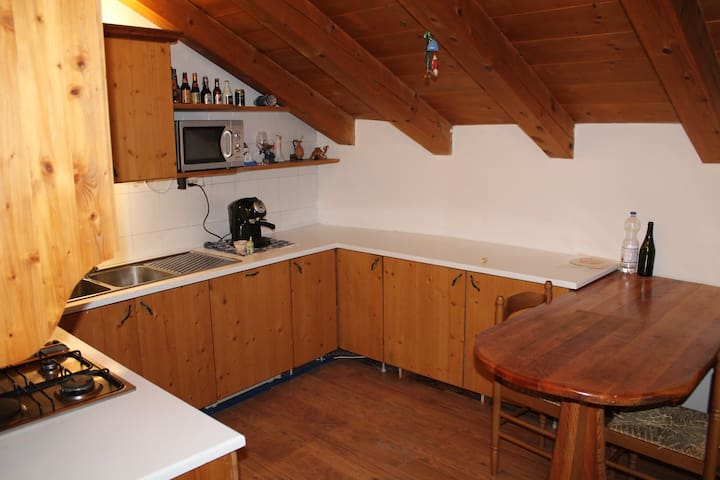 FANTASTIC APARTMENT WITH LOVELY VIE - Lozzo di Cadore